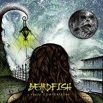 BEARDFISH - 4626-Comfortzone (CD)