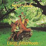 GREENSLADE - Large Afternoon