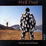 PINK FLOYD - Delicate Sound Of Thunder (2 CD)