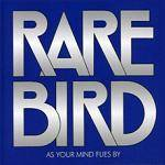 RARE BIRD - As Your Mind Flies By