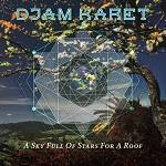 DJAM KARET - A Sky Full Of Stars For A Roof (Digipak)