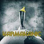 KARMAKANIC - In A Perfect World (Special Edition)